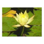 Dicha de Lotus Invitación 13,9 X 19,0 Cm
