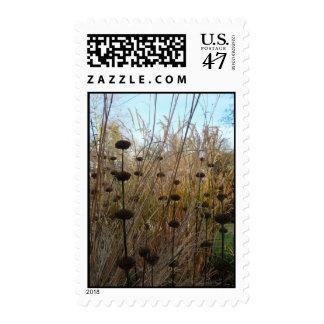 Dicha del otoño - sellos