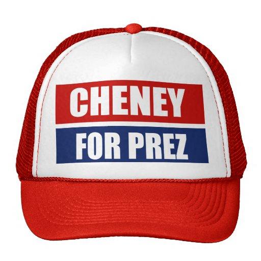 DICK CHENEY 2012 HAT