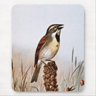 Dickcissel Bird Illustration Mouse Pad