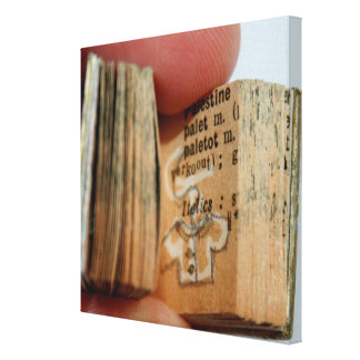 DicofrAngle Miniature Book Jacket Drawing Canvas