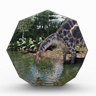 Dicraeosaurus Dinosaur Feeding on a River Award