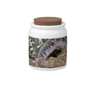 Dicraeosaurus Dinosaur Feeding on a River Candy Jar