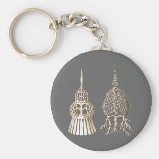 Dictyospyris & Sepalospyris Keychain