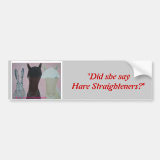 Did She Say Hare Straighteners? Bumper Sticker