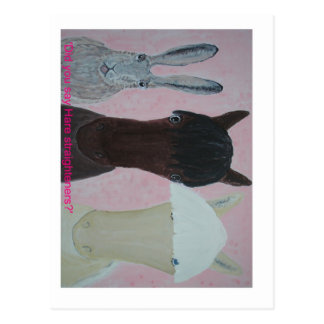 Did She Say Hare Straighteners? card