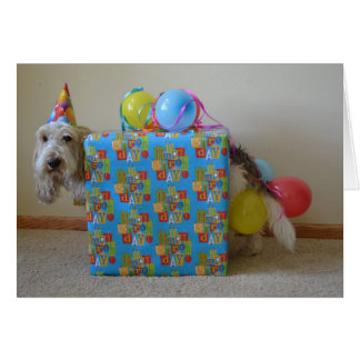 Did someone order a birthday gift? greeting cards