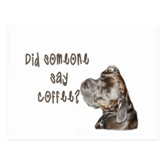 Did someone say coffee? postcard