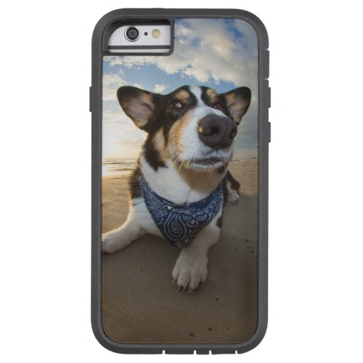 Did Someone Say Cookie? iPhone 6 Case