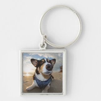 Did Someone Say Cookie? Key Chains
