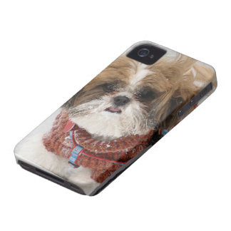 Did Someone Say SNOW? iPhone 4 Case