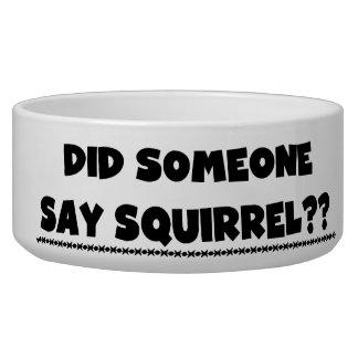 Did Someone Say Squirrel Dog Dish