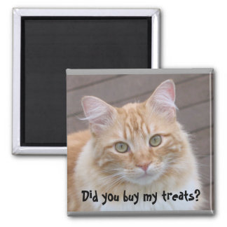 Did you buy my treats? Cat magnet
