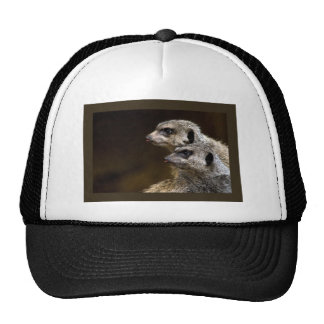 Did You See THAT? Trucker Hat