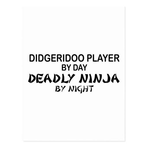 Didgeridoo Ninja mortal por noche Postal
