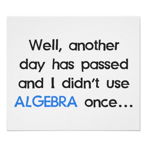 Didn't Use Algebra Once Today Posters