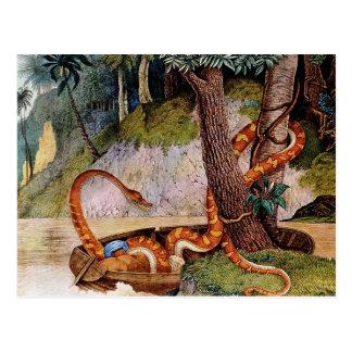 Die Königsschlange or The Boa Constrictor (1867) Postcard