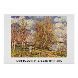 Die Small Meadows In Spring, By Alfred Sisley Poster