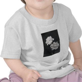 diecinueveavo C. Claveles Camisetas