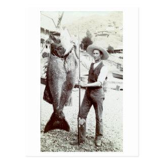 diecinueveavo C. Pescador y mero de Goliat Tarjetas Postales