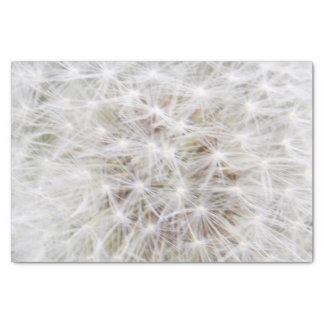 Diente de león 9668 papel de seda pequeño
