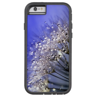 Diente de león azul funda de iPhone 6 tough xtreme