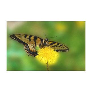 Diente de león de la mariposa impresion de lienzo