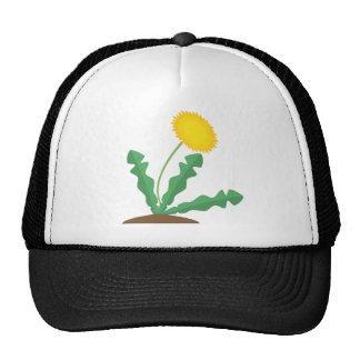 Diente de león estilizado gorra