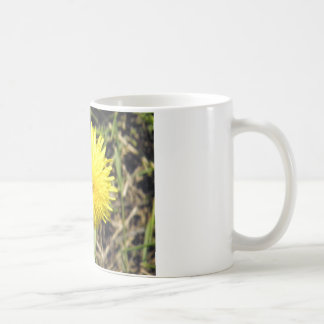 Diente de león excelente taza de café