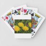 Dientes de león cartas de juego