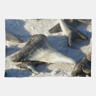Dientes de los tiburones de la playa de Jax Toalla De Cocina