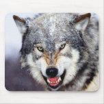 Dientes del lobo gris alfombrilla de raton