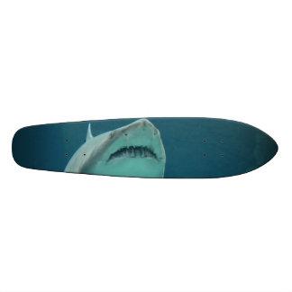 Dientes del tiburón monopatín 21,6 cm