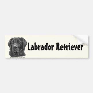 Diesel, Black Labrador Retriever Bumper Sticker