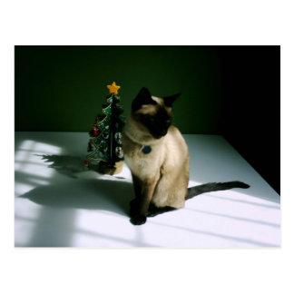 Diesel del gato del negro y de la piel en Navidad Postal