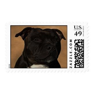 Diesel the staffy stamp