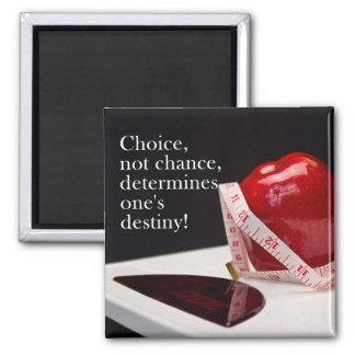 Diet Encouragement Magnet Refrigerator Magnets