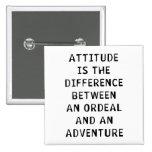 Diferencia de la actitud pins