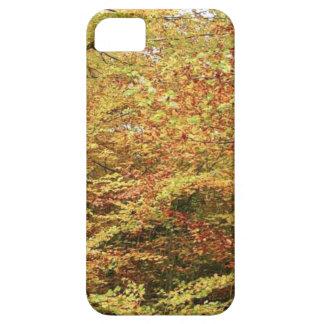 DIFERENT COLORS OF AUTUMN iPhone SE/5/5s CASE