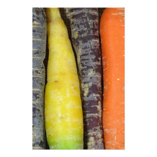 Different colored carrots stationery