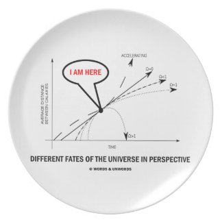 Different Fates Of The Universe In Perspective Dinner Plate