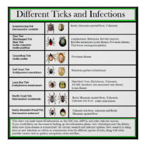Different Ticks and Infections Chart