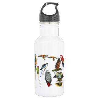 Different types of parrot for the parrot love 18oz water bottle