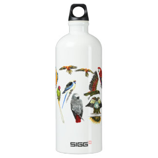 Different types of parrot for the parrot love SIGG traveler 1.0L water bottle
