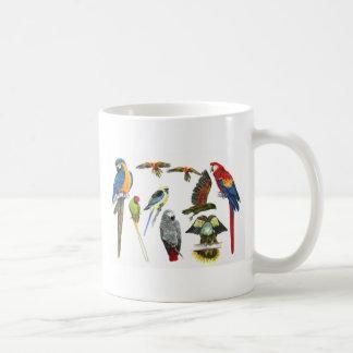 parrot types mugs parrot types coffee mugs steins amp mug