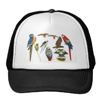 Different types of parrot gift for the parrot love trucker hat