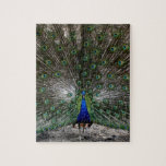"""Difficult puzzles gifts peacock feathers puzzle<br><div class=""""desc"""">Difficult puzzles gifts peacock feathers puzzle gift idea. Featuring photography by Kyla Schnabel of Imaginative Imagery.</div>"""
