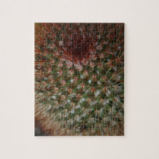 Difficult unique puzzles gift ideas gifts cactus