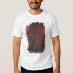 Diffuse Nebula T-shirt