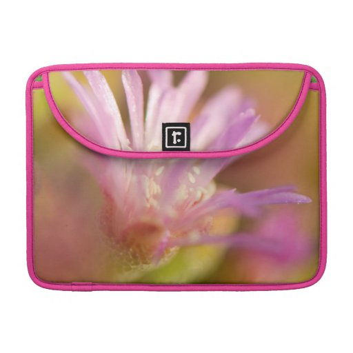 Diffused Image Of A Colorful Succulent Flower Sleeves For MacBooks